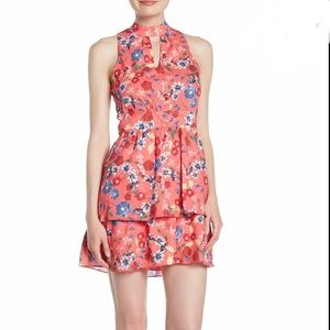 Brand New Parker Fit & Flare Floral Ruffle Dress